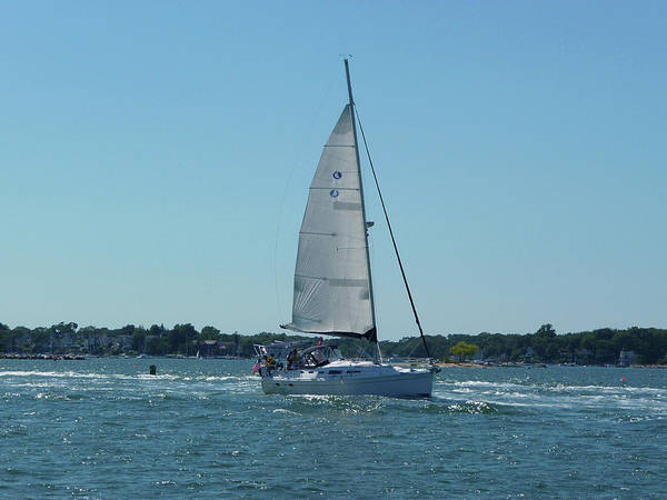 Sailing Art Print featuring the photograph Wind In The Sails by Margie Avellino