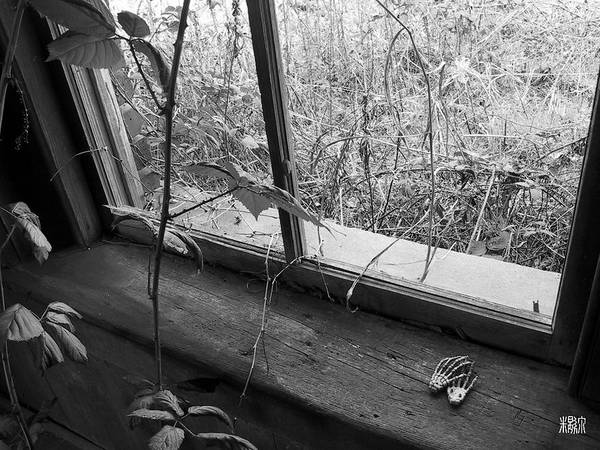 B/w Art Print featuring the photograph Window Of The Past by Michele Caporaso