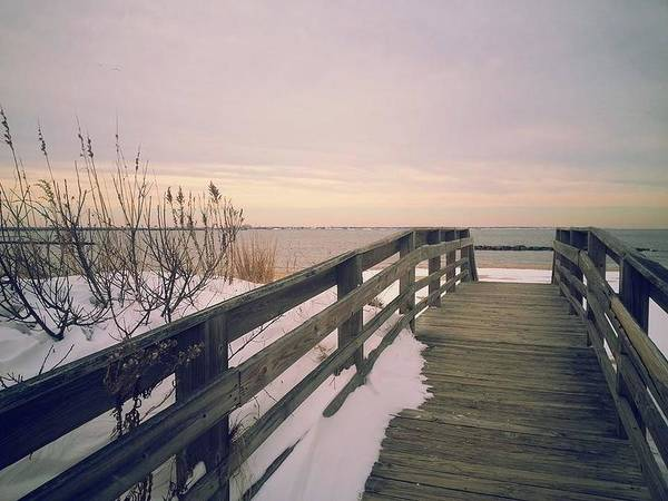 Beach Art Print featuring the photograph Winter At The Beach by Chris Lewis