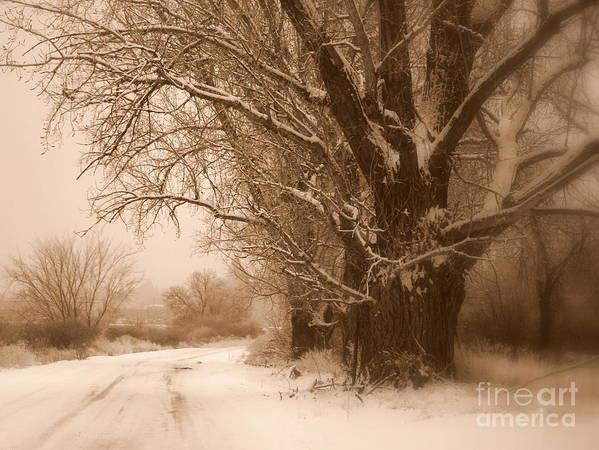 Prosser Art Print featuring the photograph Winter Dream by Carol Groenen