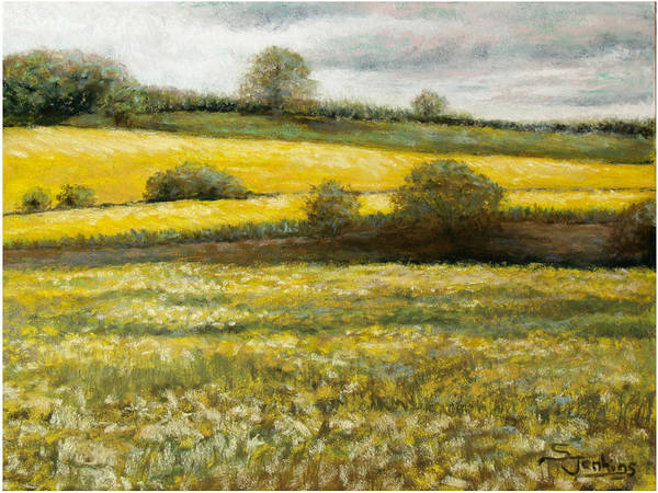 Landscape Art Print featuring the painting Yellow Fields by Susan Jenkins