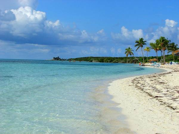Water's Edge Art Print featuring the photograph Coco Cay- Bahamas by Joy Ride By Taylor