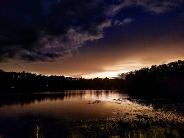 Sunset Art Print featuring the photograph Dark Reflections by Shena Sanders