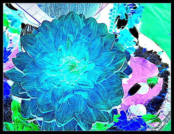 Flowers Flowers And Flowers Art Print featuring the photograph Flowers Flowers And Flowers by Anand Swaroop Manchiraju