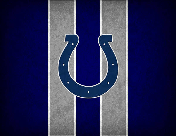 Colts Art Print featuring the photograph Indianapolis Colts by Joe Hamilton