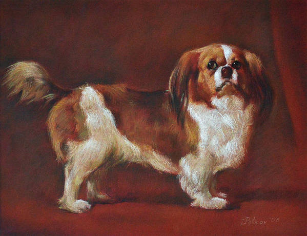 Pastel Art Print featuring the painting A King Charles Spaniel by Iliyan Bozhanov