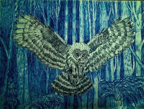 Black Owl On Blue Night Art Print featuring the drawing Black Owl On Blue Night by Rodger Larson