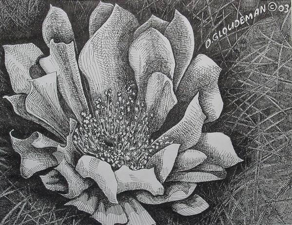 Flowers Art Print featuring the drawing Cactus Flower by Denis Gloudeman