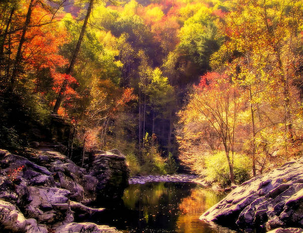 Mountain Streams Art Print featuring the photograph Calling Me Home by Karen Wiles