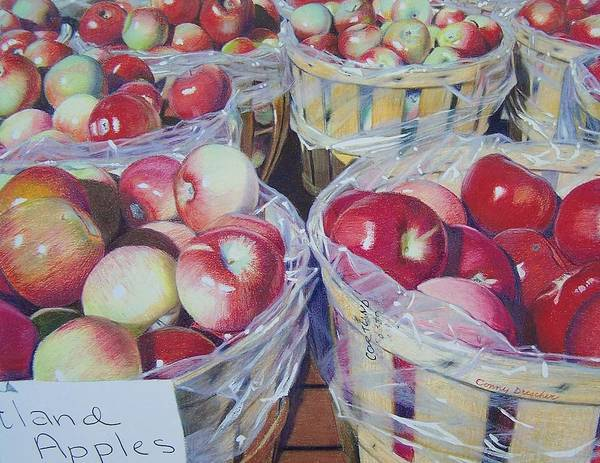 Apple Art Print featuring the mixed media Cortland Apples by Constance Drescher