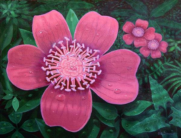 Flowers Rain Water Pink Magenta Violet Beautiful Jungle Rain Art Print featuring the painting Jungle Rain by GG James
