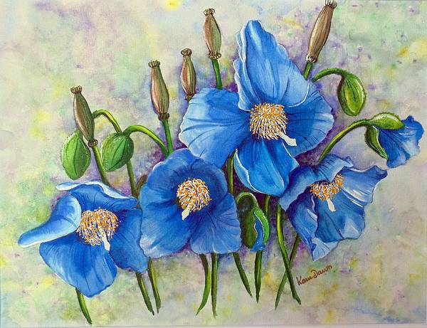 Blue Hymalayan Poppy Art Print featuring the painting Meconopsis  Himalayan Blue Poppy by Karin Dawn Kelshall- Best