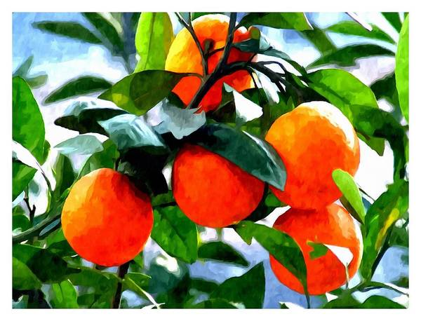 Agricultural Art Print featuring the painting Orange Tree In Springtime by Jeelan Clark