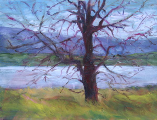 Water Art Print featuring the painting Scenic Landscape Painting Through Tree - Spring Has Sprung - Color Fields - Original Fine Art by Quin Sweetman