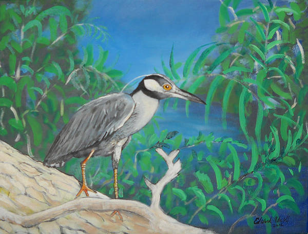 Pelican Art Print featuring the painting Night Heron by Edward Walsh