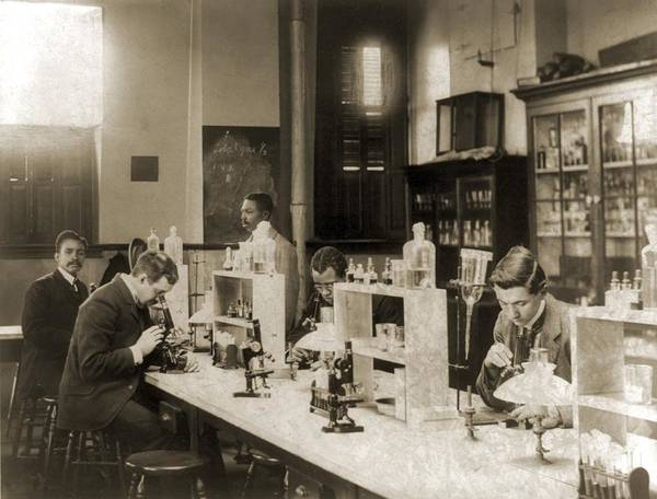 History Print featuring the photograph Class In Bacteriology At Howard by Everett