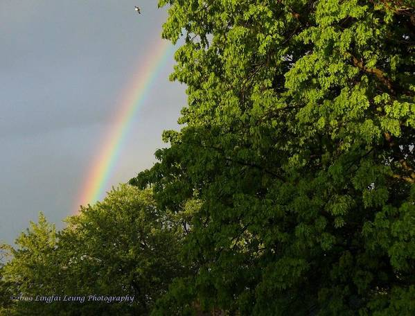 Rainbow Photograph Art Print featuring the photograph Somewhere Over The Rainbow by Lingfai Leung
