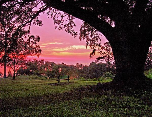 Alabama Photographer Art Print featuring the digital art Sunset On The Bench by Michael Thomas