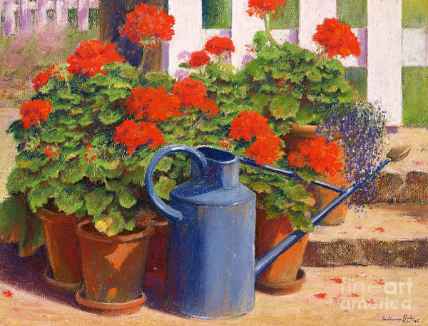 Still Life; Geranium; Geraniums; Pot Plant; Plants; Flowers; Red; Garden; Gardening; Flower; Leaf; Leafs; Leafy; Pot; Pots; Fence; Fences; Stairs; Watering Can; Blue Art Print featuring the painting The Blue Watering Can by Anthony Rule