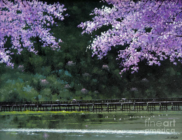Cherry Art Print featuring the painting Togetsukyo Bridege In Cherrybrossom by Isao Ito