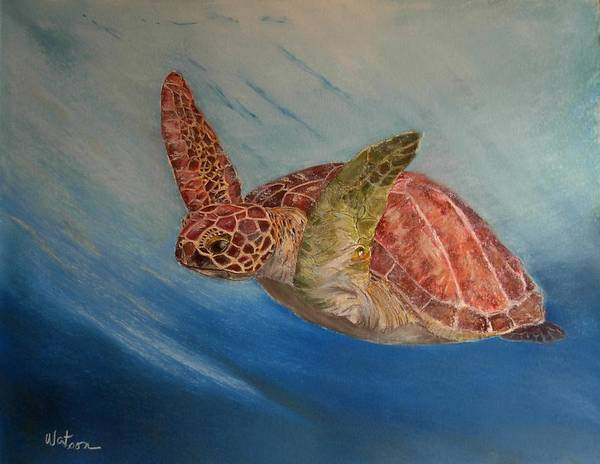 Green Trutle Art Print featuring the painting Flying Underwater by Ceci Watson