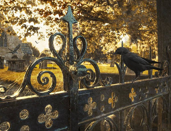 Cemetery Art Print featuring the photograph Jackdaw On Church Gates by Amanda Elwell
