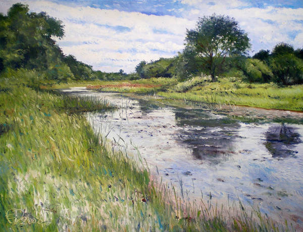 Maun Okavango Delta Art Print featuring the painting Thamalakane River At Maun Botswana 2008 by Enver Larney