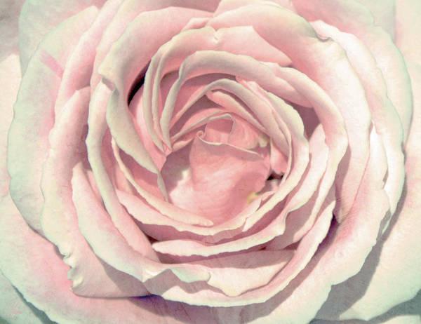 Rose Art Print featuring the digital art A Rose Is A Rose by Margaret Hormann Bfa