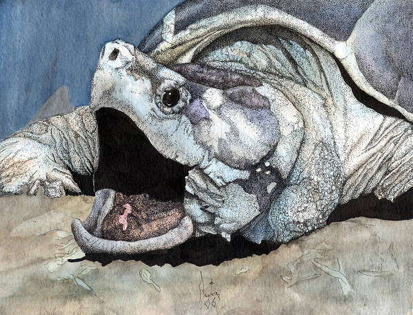 Reptile Turtles Alligator Snapper Turtle Art Snapping Turtle Art Print featuring the painting Alligator Snapping Turtle by Preston Shupp