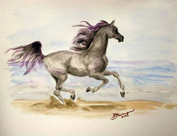 Arabian Art Print featuring the painting Arabian In Wind by BJ Redmond