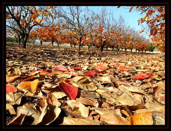 Autumn Art Print featuring the photograph Autumn Colors 02 by Arik Baltinester