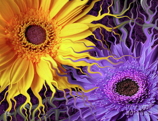 Flowers Print featuring the painting Daisy Yin Daisy Yang by Christopher Beikmann