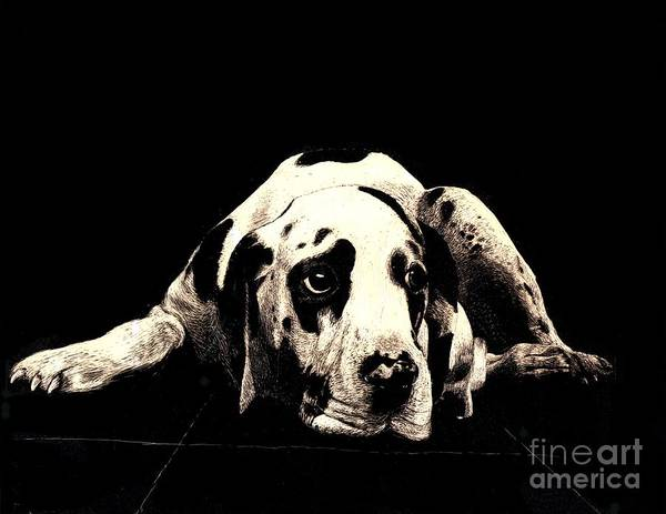 Dog Art Print featuring the drawing Dawg by Andy Mercer