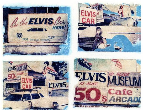 Elvis Art Print featuring the photograph Disgraceland by Jane Linders