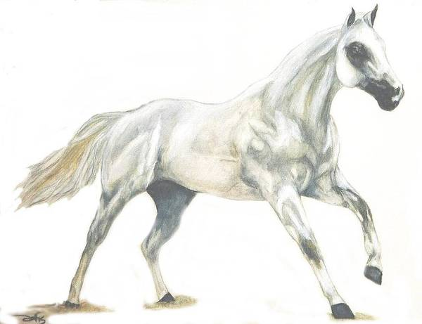 White Horse Art Print featuring the painting Ghost Horse by Debra Sandstrom