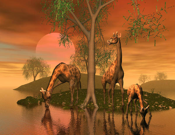 Animals Art Print featuring the digital art Giraffe Family By John Junek by John Junek