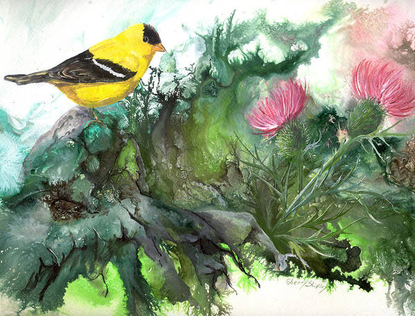 Bird Art Print featuring the painting Goldfinch by Sherry Shipley