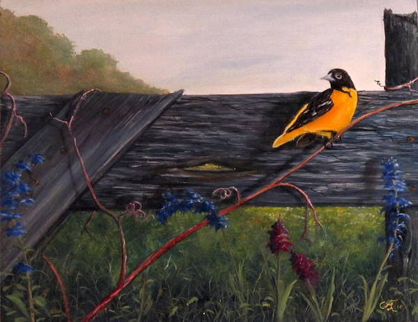 Oriole Art Print featuring the painting Good Morning by Catfish Lawrence
