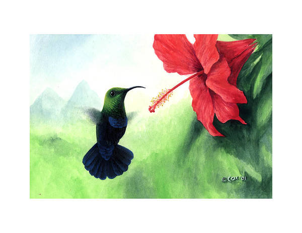 Chris Cox Art Print featuring the painting Green-throated Carib Hummingbird And Red Hibiscus by Christopher Cox