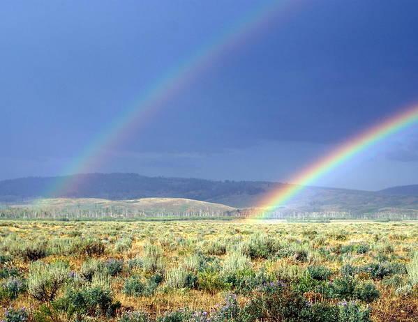 Rainbow Art Print featuring the photograph High Dessert Rainbow by Marty Koch