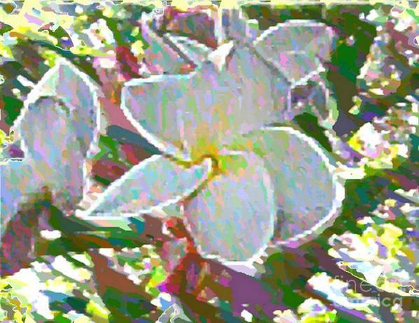 Flower Art Print featuring the photograph In Bloom by Vicki Lynn Sodora