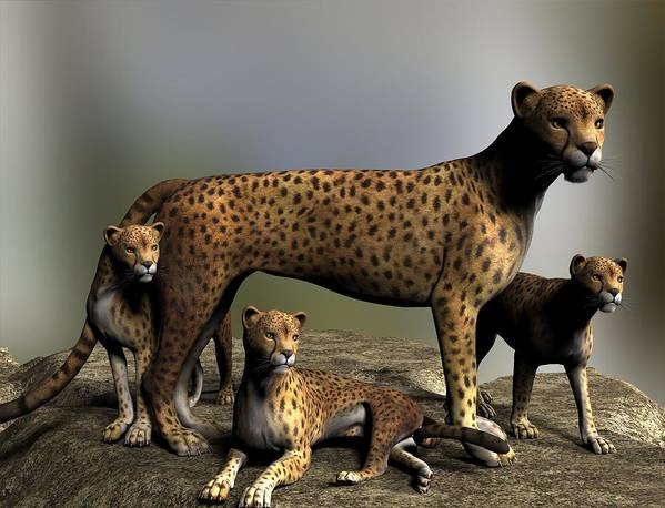Cheetah Art Print featuring the digital art Kitty Kitty by Linda Cole
