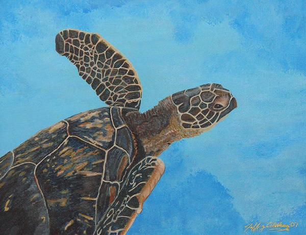 Hawaiian Sea Turtle Art Print featuring the painting Lil Honu by Jeffrey Oldham