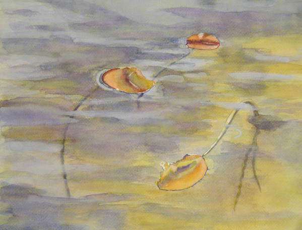 Lily Pads. Water Art Print featuring the painting Lily Pads by D T LaVercombe