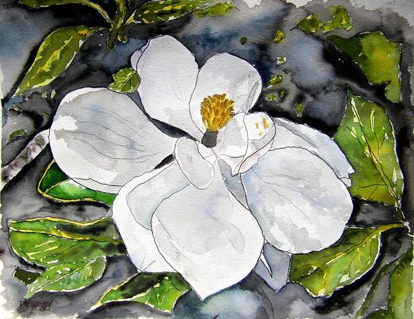 Magnolia Art Print featuring the painting Magnolia Tree Flower by Derek Mccrea