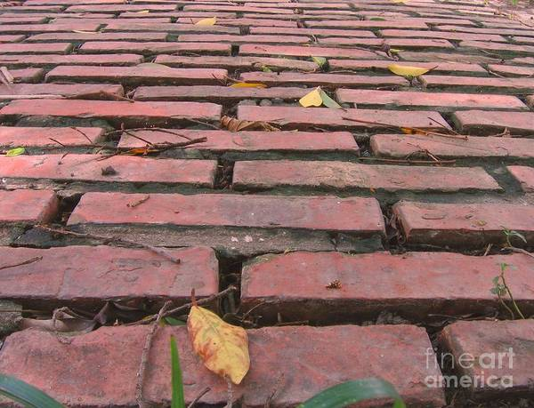 Old Art Print featuring the photograph Old Red Brick Road by Yali Shi