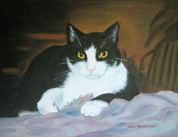 Cat Art Print featuring the painting Oreo by Anne Trotter Hodge
