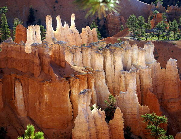 Bryce Canyon National Park Art Print featuring the photograph Pastel Bryce by Marty Koch