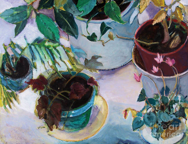 Plants Print featuring the painting Potted Plants by Diane Ursin