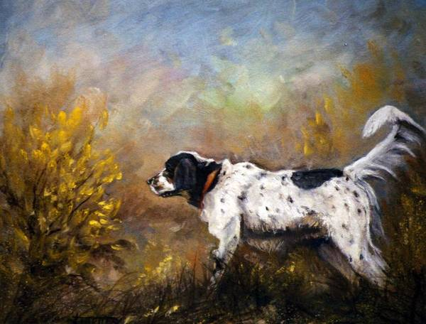 Animal Art Print featuring the painting Rebel by Jimmie Trotter
